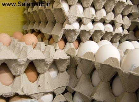 به هیچ وجه تخم مرغ شانه ای خریداری نکنید